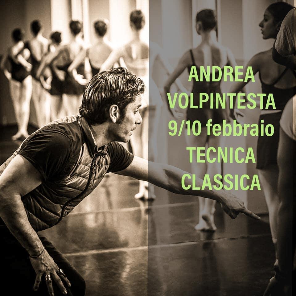 ANDREA VOLPINTESTA